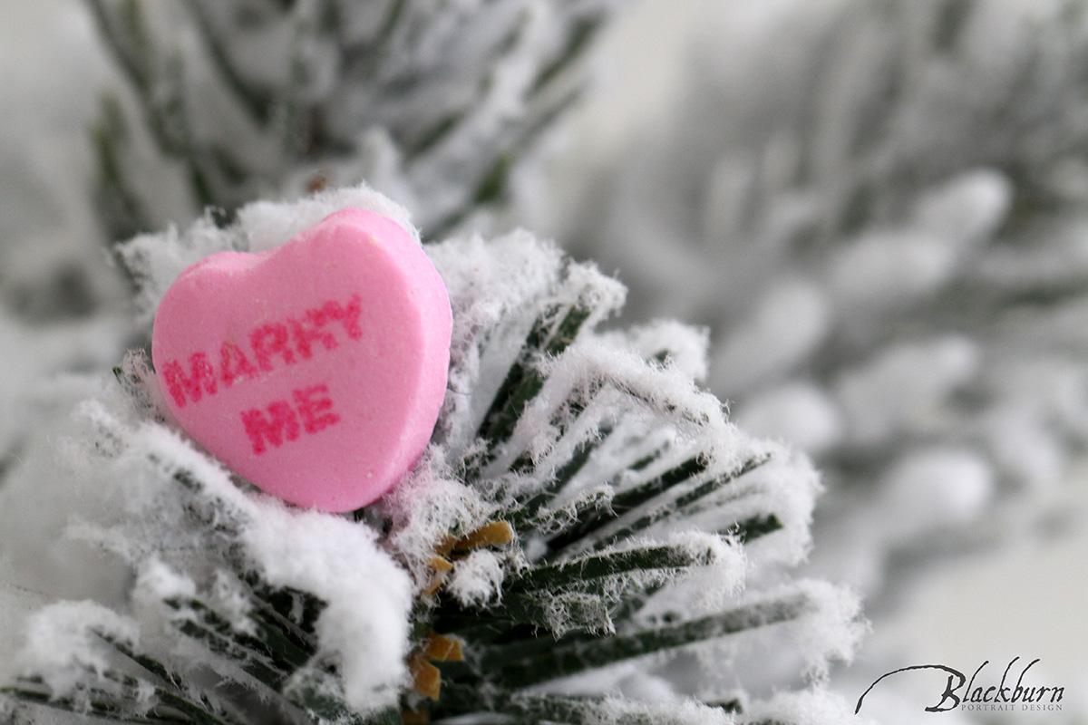 Perfect Proposal Photo