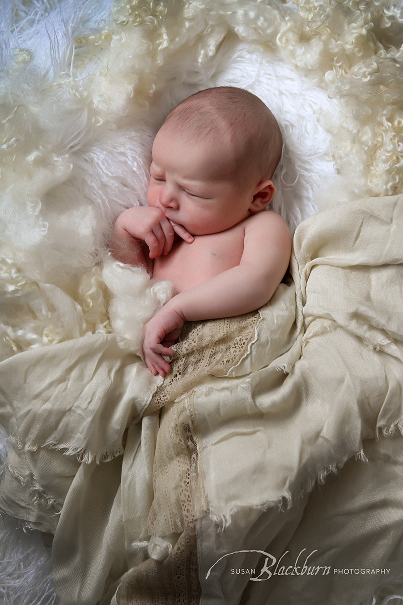Saratoga Springs Newborn Photography Studio