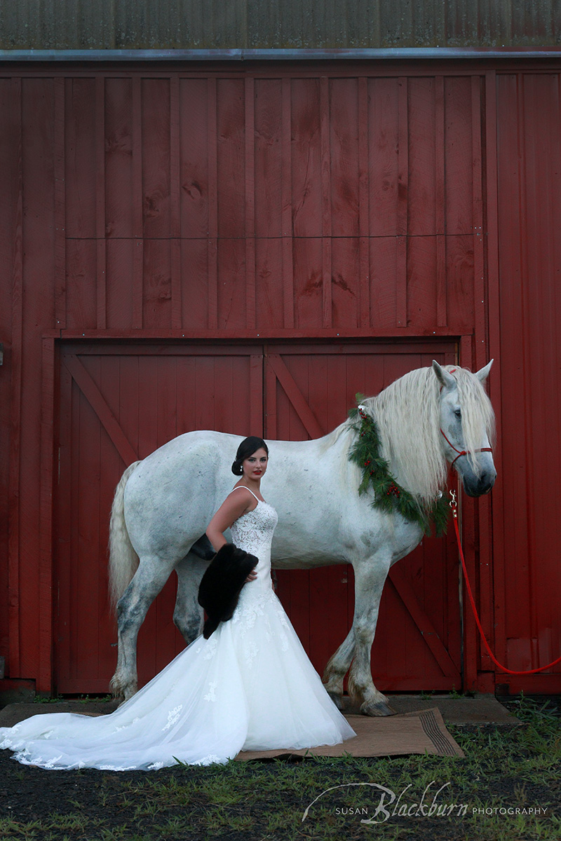 Equestrienne Bridal Photo Saratoga Springs NY