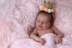 Newborn Baby Photo Saratoga NY
