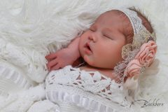 Newborn Photos Saratoga Springs NY