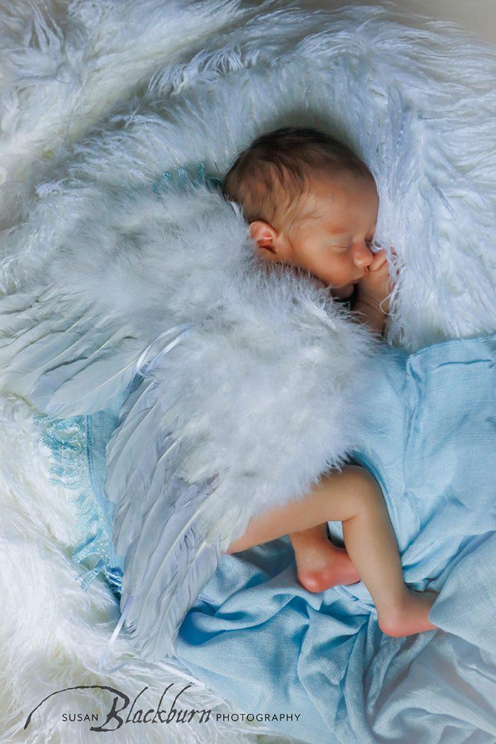 Newborn Photographerss Albany NY